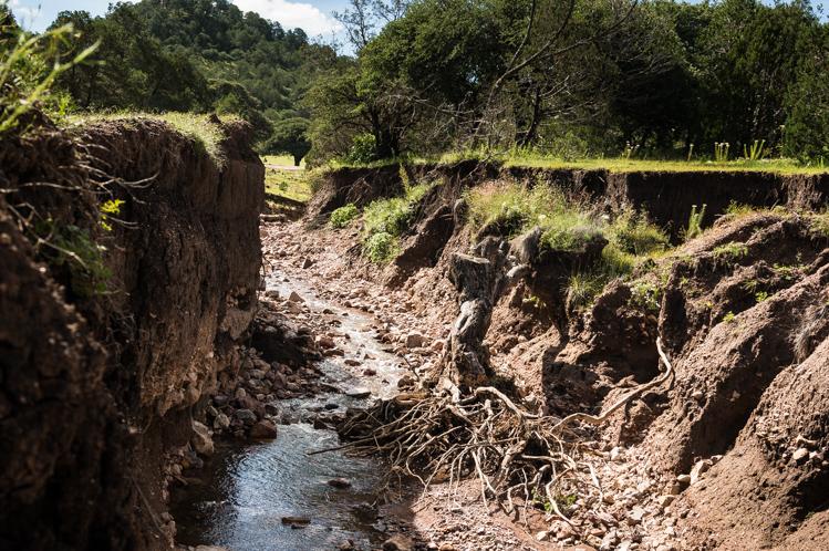 Auch hier hat es wohl stark geregnet. Ein paar kleinere Brücken hatten Löcher.