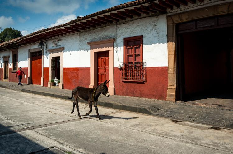 Alle Häuser sind einheitlich rot und weiss gestrichen. Der Esel ist wohl zu Hause ausgerissen und hat sich auf den Weg in die Stadt gemacht.