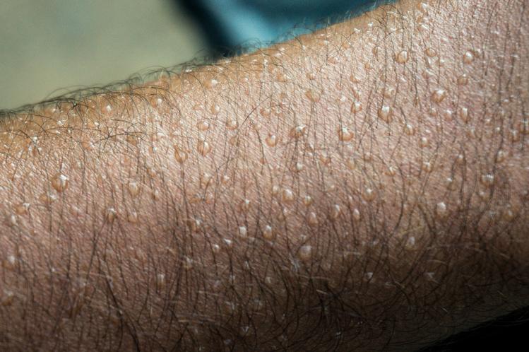 Es war heiss und vor allem feucht, ich schwitzte sogar beim nichts tun
