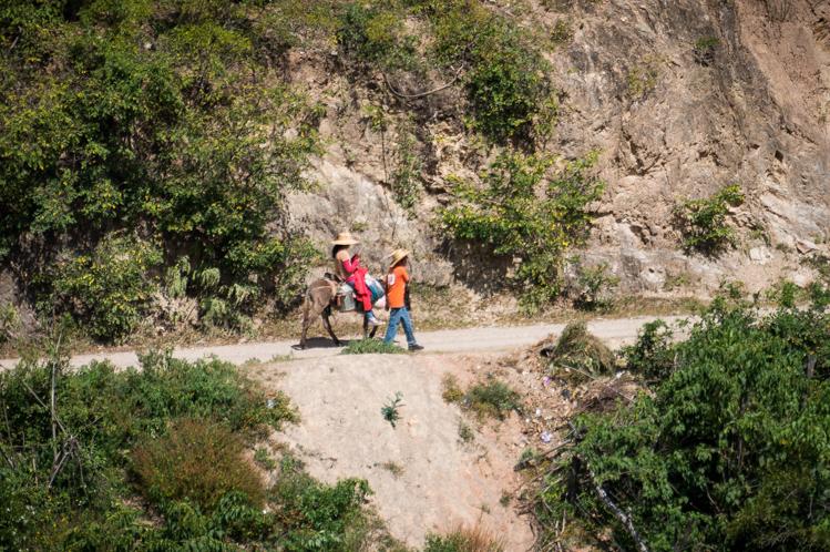 Es ist erstaunlich wie viele Leute hier noch den Esel als Transportmittel nutzen. Der Süden Mexikos ist wirklich viel ärmer als der Norden.