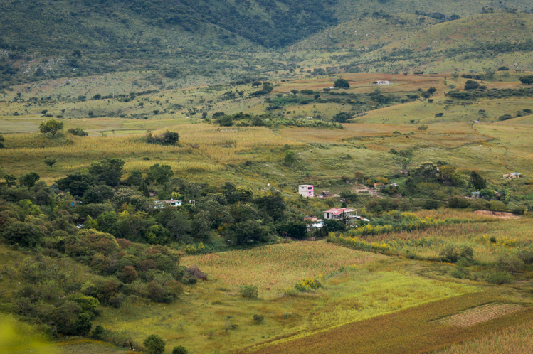 kleine Siedlungen mit Maisfeldern